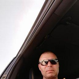 Владимир, 44 года, Электрогорск