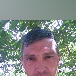 Виталий, 49 лет, Таганрог