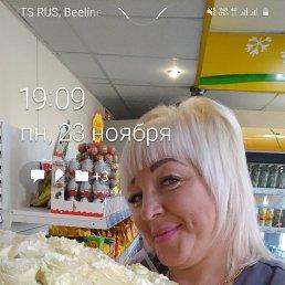 Ольга, 41 год, Владивосток