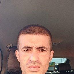 Рустам, 30 лет, Бронницы