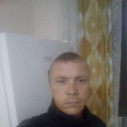 Виталий, 35 лет, Электросталь
