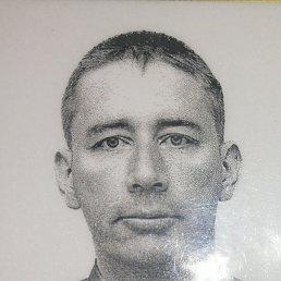 Андрей, 39 лет, Новобурейский