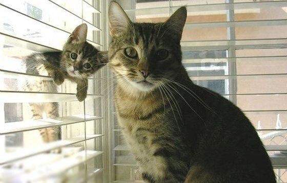 И я хочу фоткаться с мамой!!!!!))))