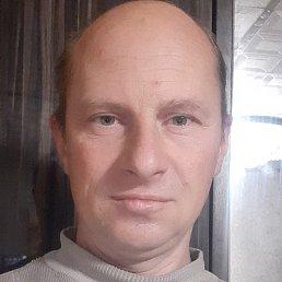 Дмитрий, 41 год, Бишкек