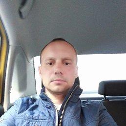 Сергей, 43 года, Кемерово