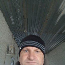 Николай, 44 года, Воронеж