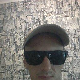 Дмитрий, 37 лет, Волгоград