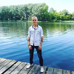 Максим, 29 лет, Сумы