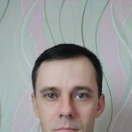 Сергей, 37 лет, Волгоград