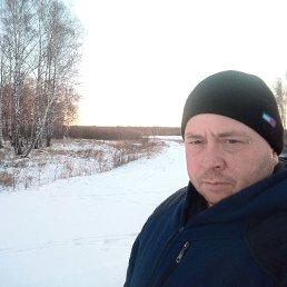 Дима, 41 год, Тюмень