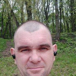 Алексей, 40 лет, Домодедово