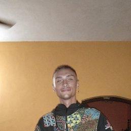 Антон, 29 лет, Барнаул