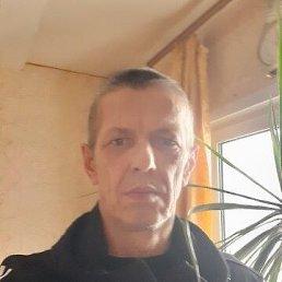 Александр, 57 лет, Тула