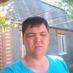 Саша, 38 лет, Таганрог