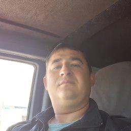 Александр, 33 года, Ставрополь