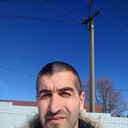 Дима, 37 лет, Кемерово