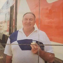 Владимир, 63 года, Гатчина
