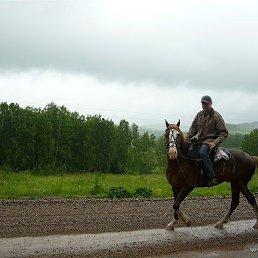 Владимир, 49 лет, Красноярск