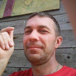 Дмитрий, 49 лет, Тольятти