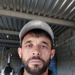 Антон, 41 год, Владивосток