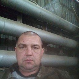 Антон, 36 лет, Владивосток