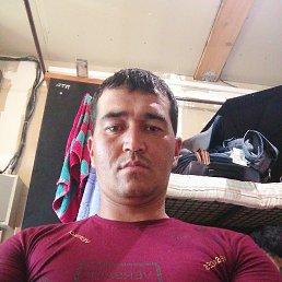 Bahtiyor, 32 года, Люберцы