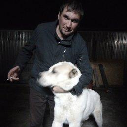 Максим, 37 лет, Екатеринбург