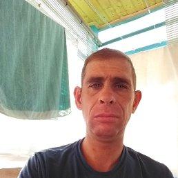 Дмитрий, Екатеринбург, 41 год
