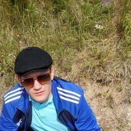 Фото Владимир, Хабаровск, 34 года - добавлено 26 сентября 2021