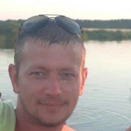 Александр, 41 год, Брест