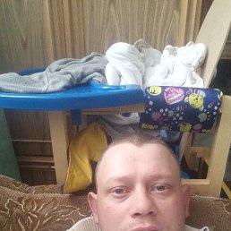 Александр, 29 лет, Майкоп